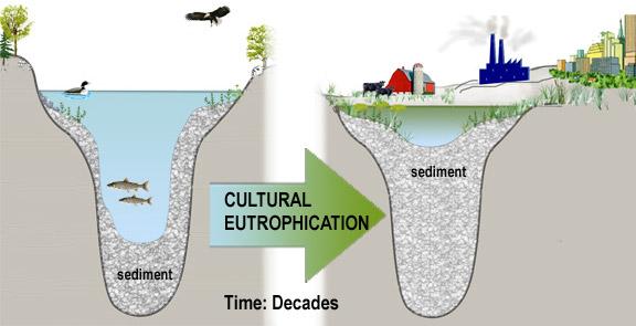 CulturalEutrophication