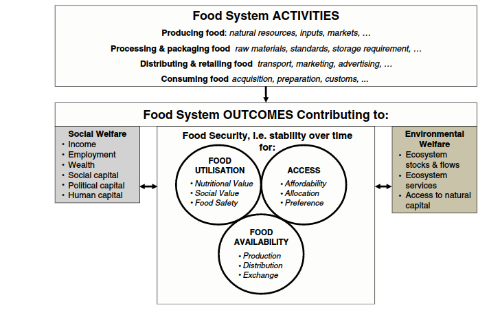 food-system-activities-and-outcomes