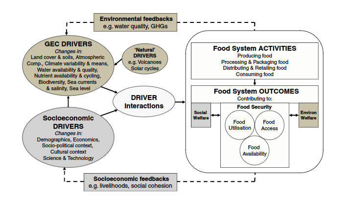 food-systems-drivers-and-feedbacks