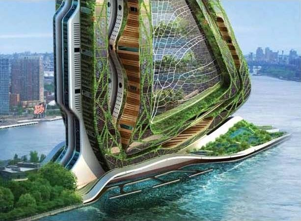 vertical farming: when high-tech meets food production