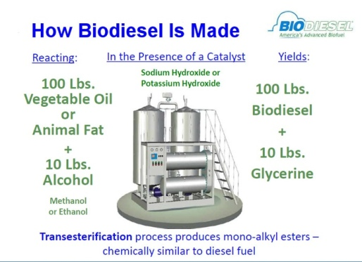 how_biodiesel_is_made