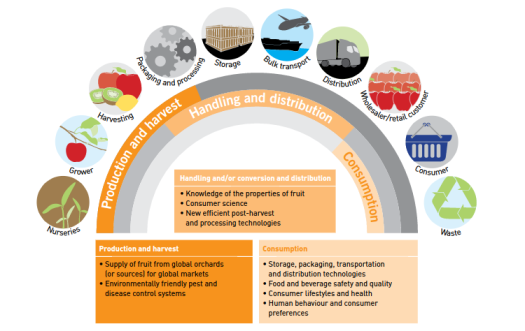 the horticulture supply chain