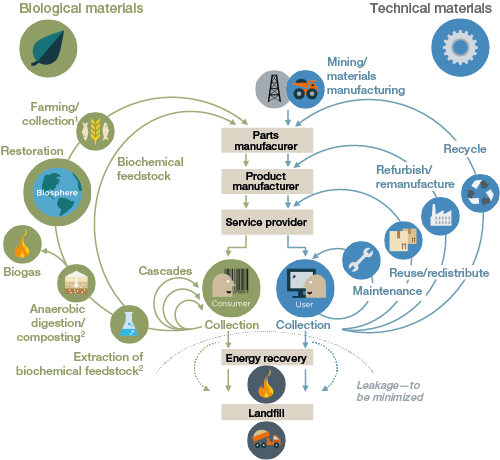 the circular economy explained