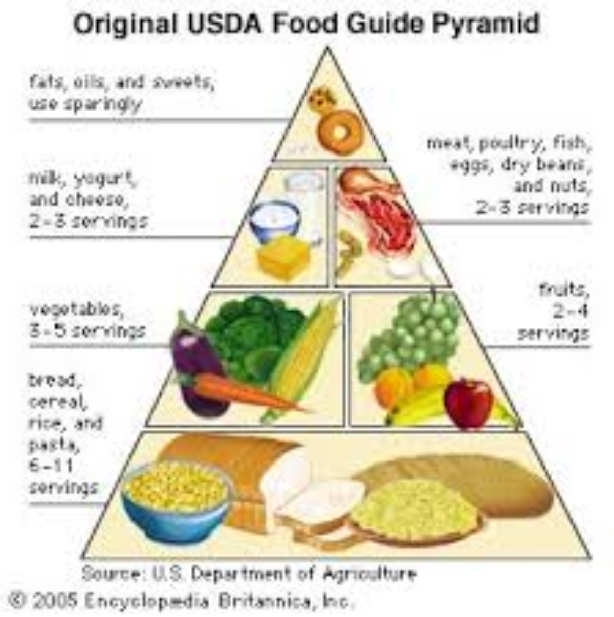 A History Of The Development Of The Food Pyramid And Dietary Guidelines In The United States Ecosystems United