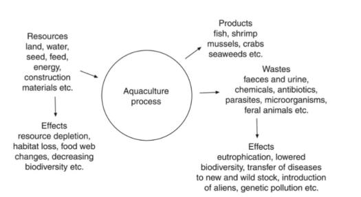 aquaculture process